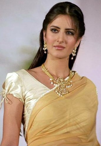 Katrina Kaif Saree Photos Exclusive Largest Collection