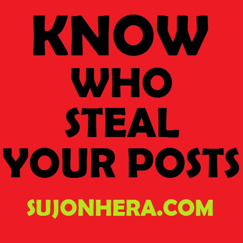 Find Out Who Steal Your Website Posts Or Articles